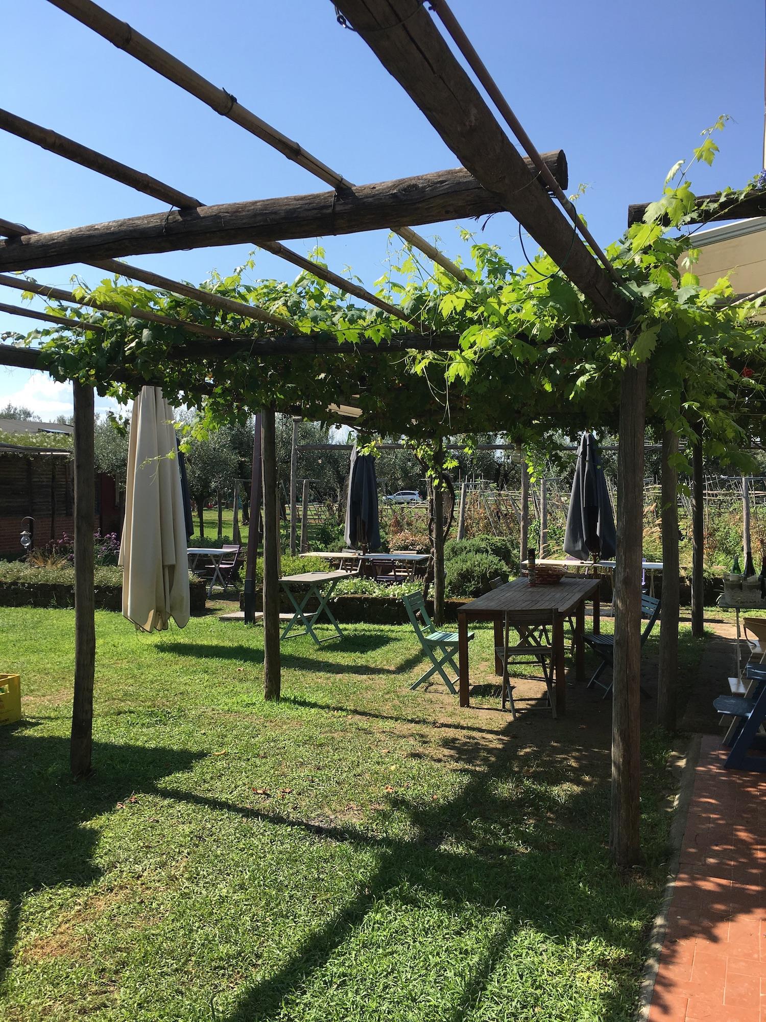 Lieblings Blog Gartenideen Pergola Wein