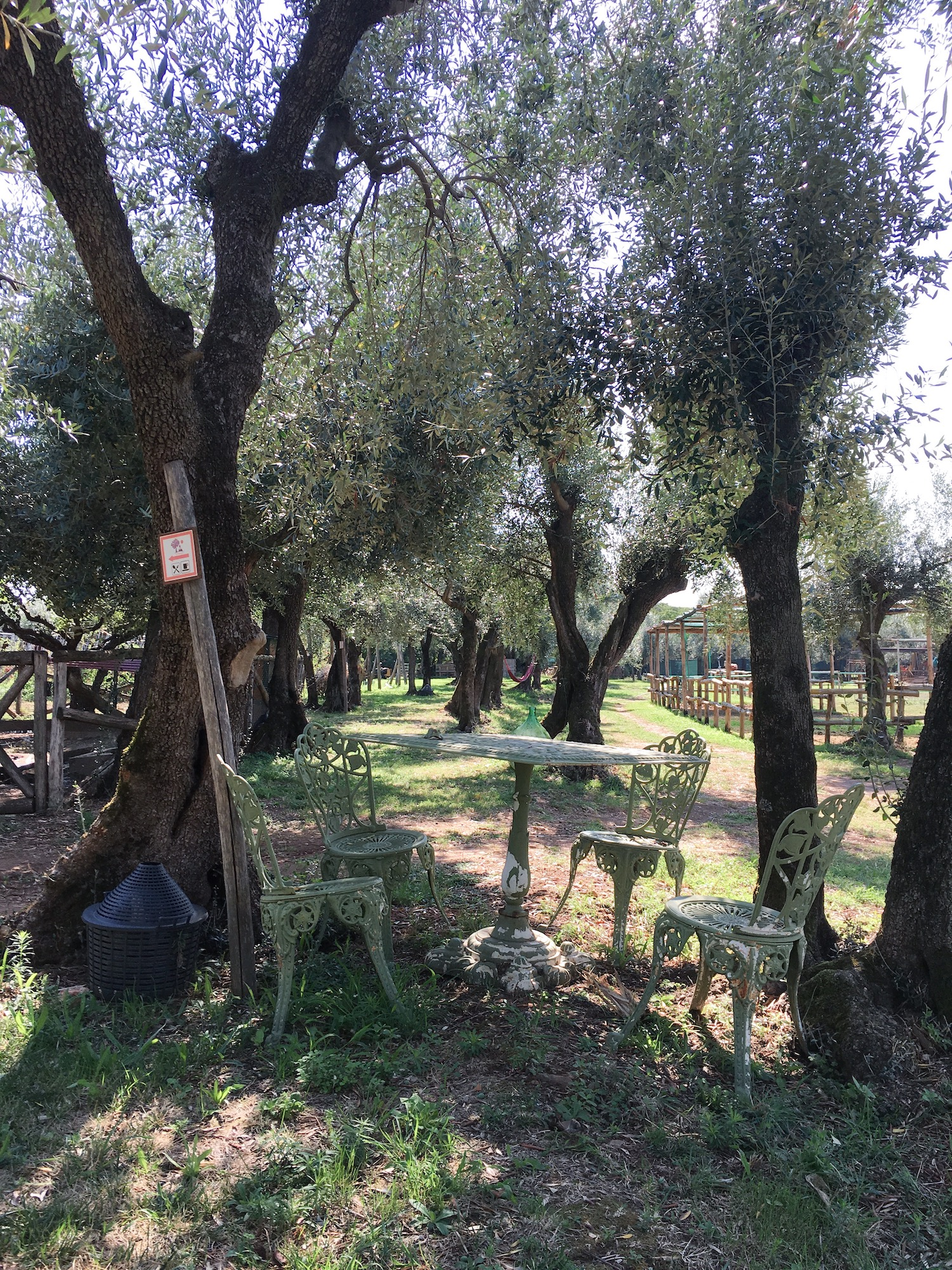 Lieblings Blog Sitzgelegenheit unter Baum